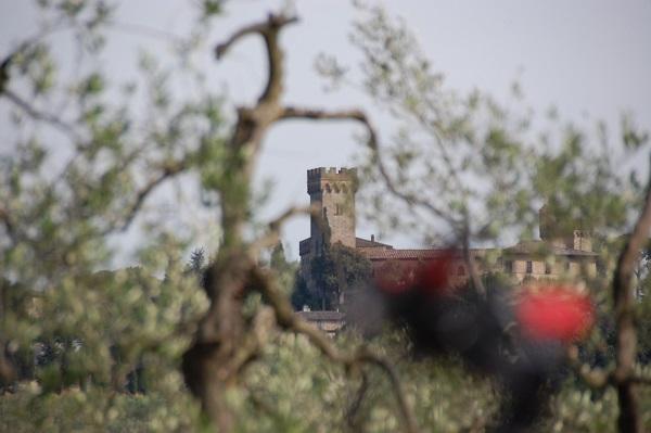 fietsen-Toscane-kastelen-audio-guide-Toscana-by-Bike (11)
