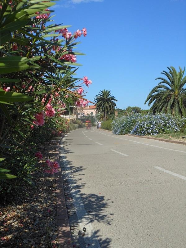 fietspad-Sanremo-Ligurië-kust (20)
