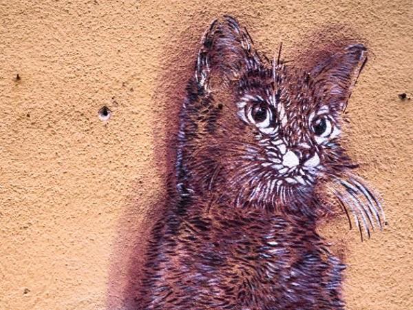 gattovia-serbelloni