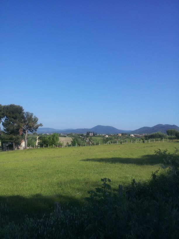 hardlopen-Etrusken (2)