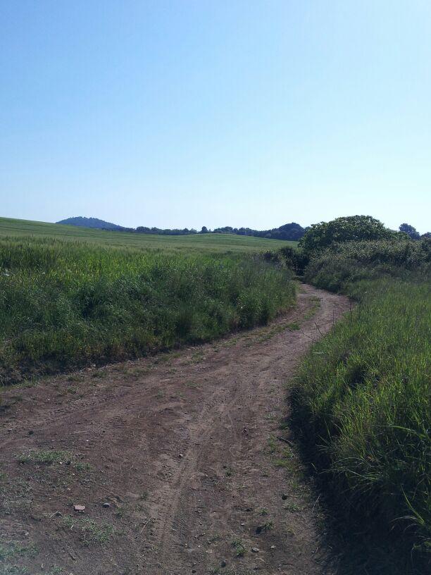 hardlopen-Etrusken (20)