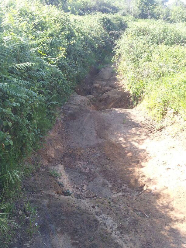 hardlopen-Etrusken (6)