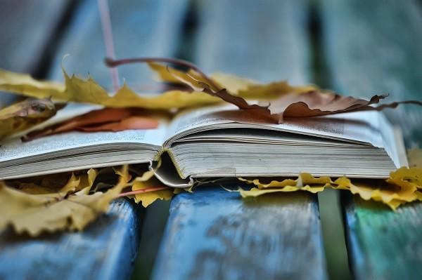 herfst-lezen-boeken-tips
