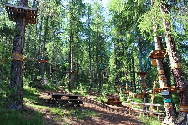 klimmen-lariks-bos-Livigno (1)