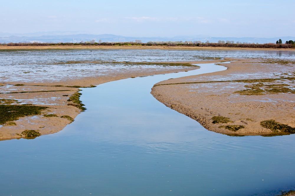 lagune-Grado (1)