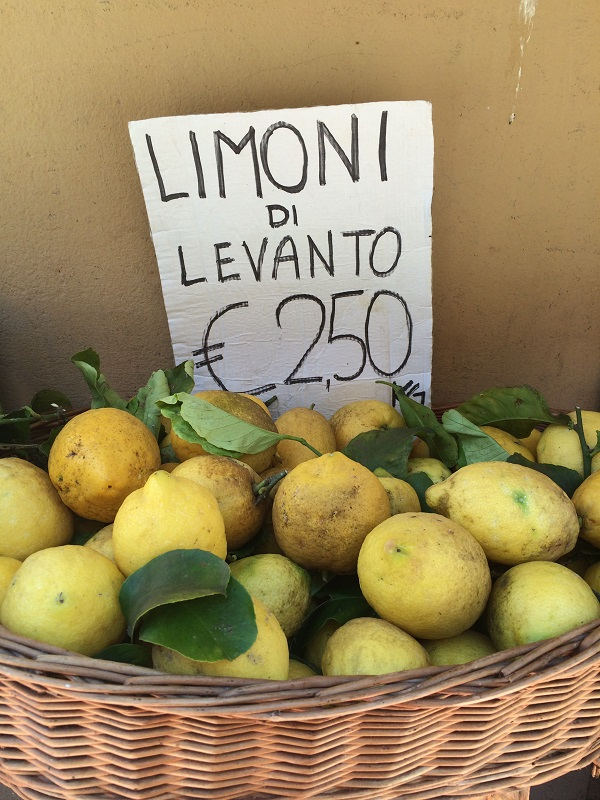 limoni-citroenen-Levanto-Ligurië