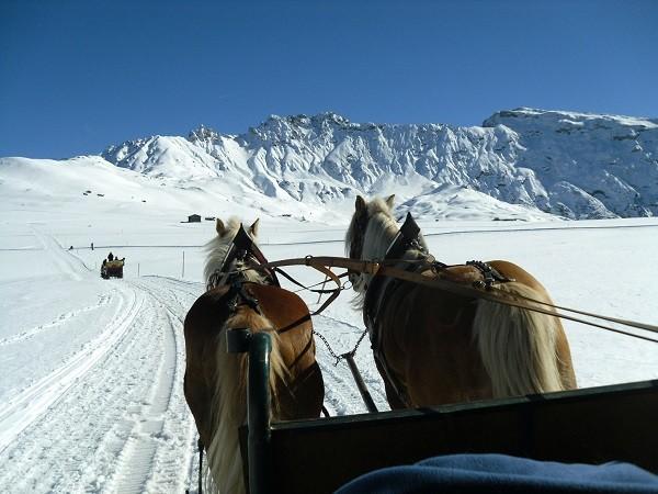 paardenslee-Dolomieten-Zuid-Tirol-2