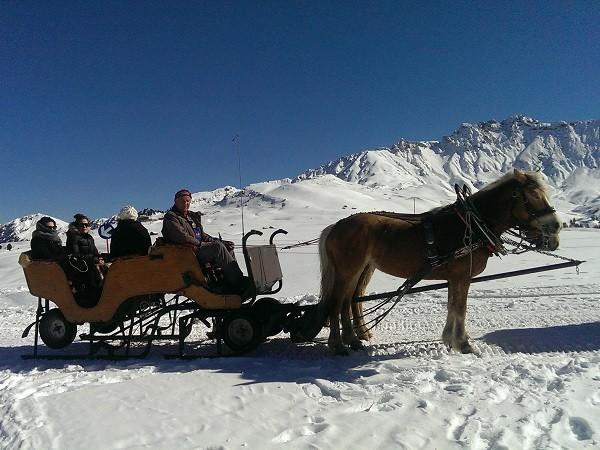 paardenslee-Dolomieten-Zuid-Tirol