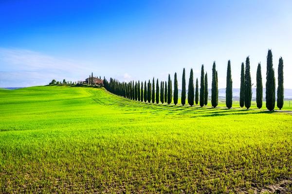 paesaggio-toscane-Toscaans-landschap
