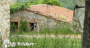 Podere-del-Buongustaio-Umbrië-Nellie-Kanters (1)