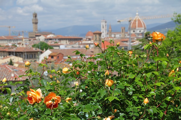 rozentuin-Florence