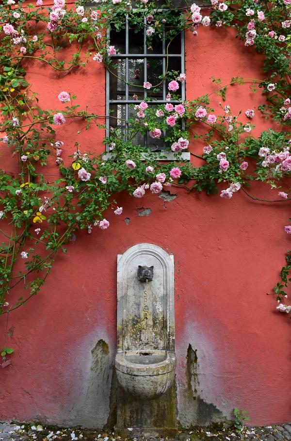 rozentuin-Roseto-Comunale-Aventijn-Rome (3)