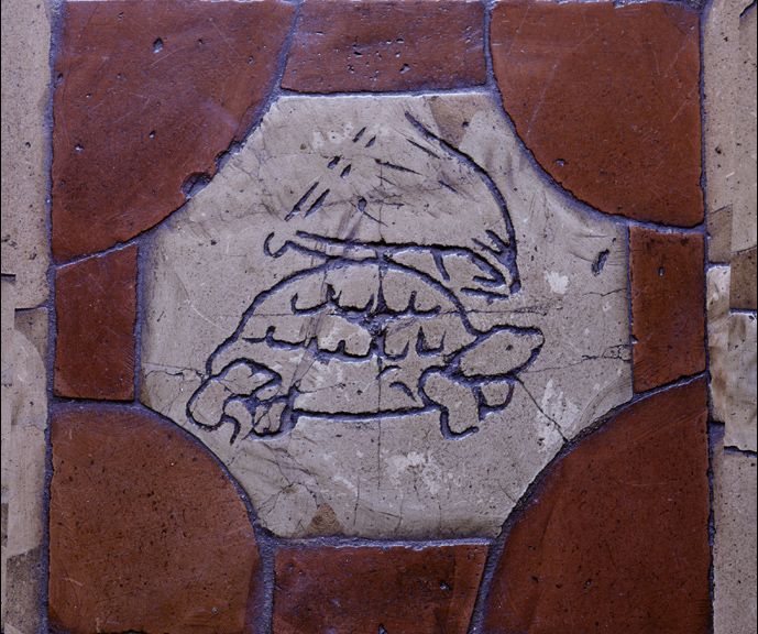 schildpad6