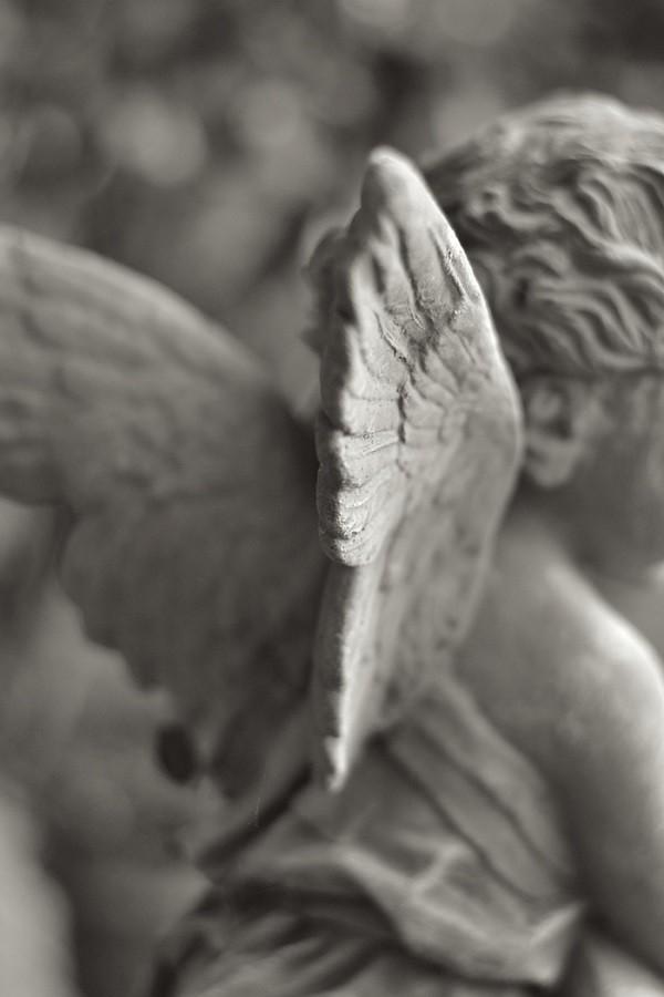 terracotta-beelden-tuin-Impruneta-Toscane-Inge-van-Beekum (3)