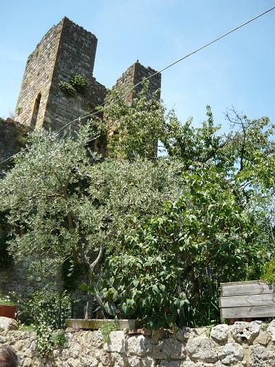 torens-Monteriggioni (2)