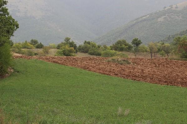 truffel-zoeken-Norcia-Umbrië (4)