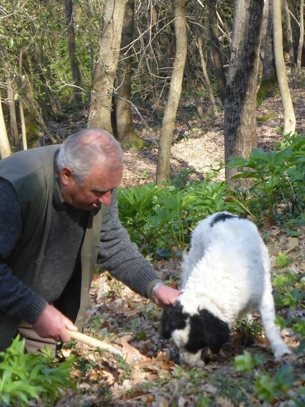 truffels-zoeken-San-Miniato-Toscane (17)