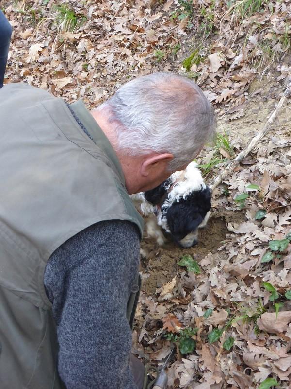 truffels-zoeken-San-Miniato-Toscane (21)