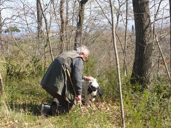 truffels-zoeken-San-Miniato-Toscane (4)