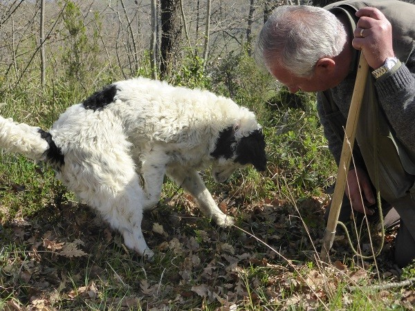 truffels-zoeken-San-Miniato-Toscane (5)
