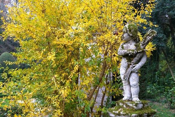 tuin-Villa-Pisani-Bolognese-Scalabrin (6)