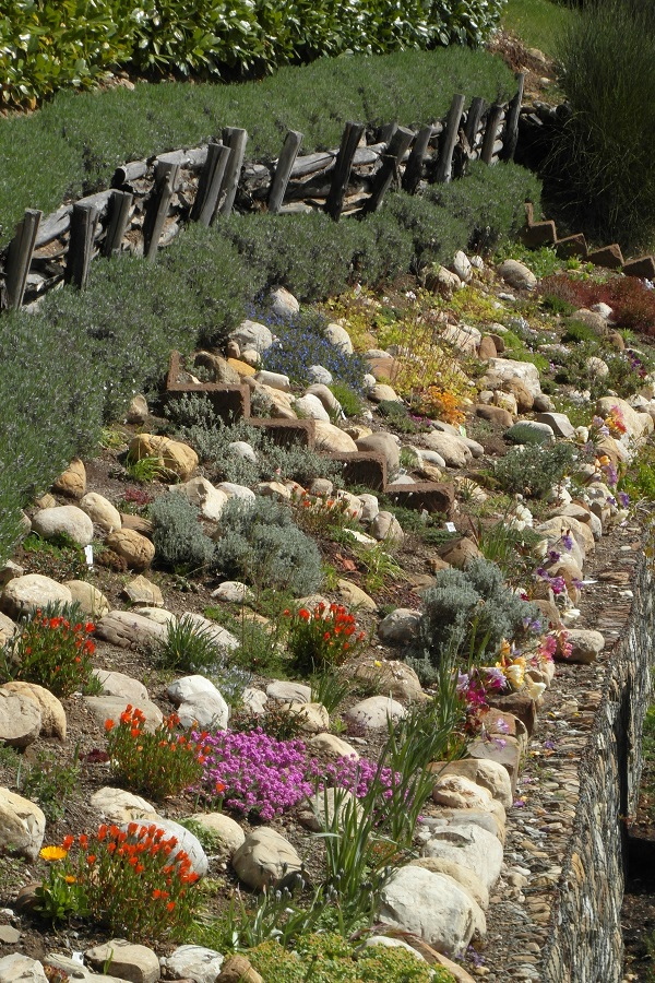 tuin-voorjaar-Italië (1)