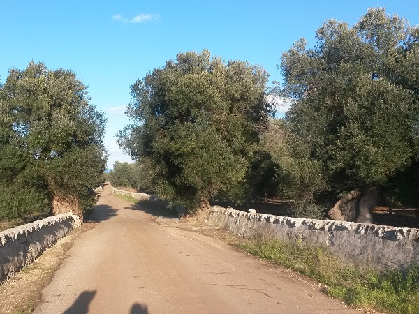 verliefd-op-Puglia (7)