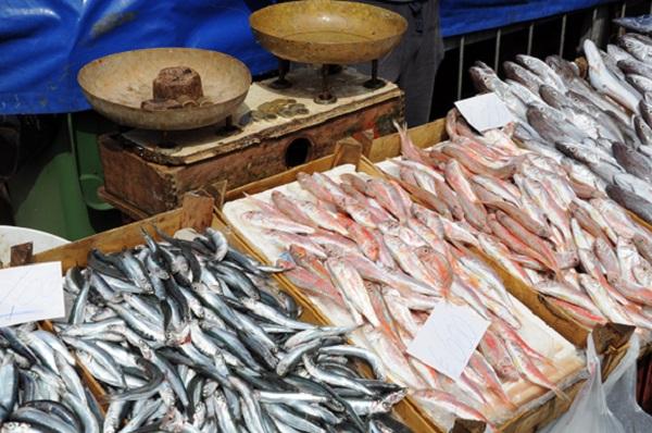 vis-markt-Catania-Sicilie-3