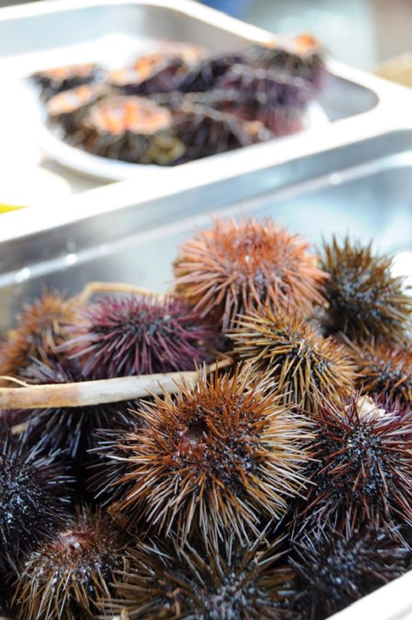 vis-markt-Catania-Sicilie-5