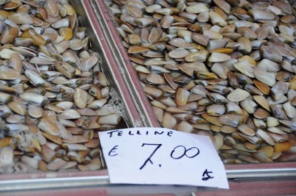 vis-markt-Catania-Sicilie