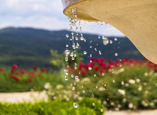 Water in de tuin en drie prachtige mediterrane planten u2013 ciao tutti