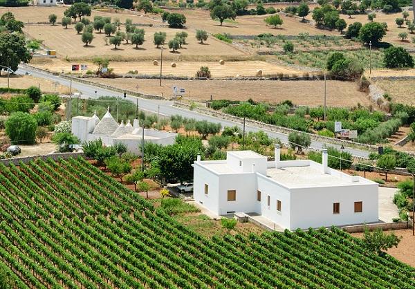 wijn-Puglia-trulli