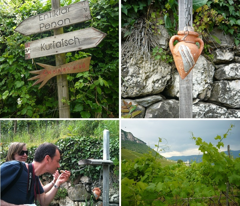 wine-teaching-trail-Zuid-Tirol