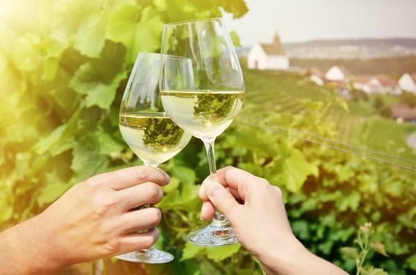 witte-wijn-Italië (2)