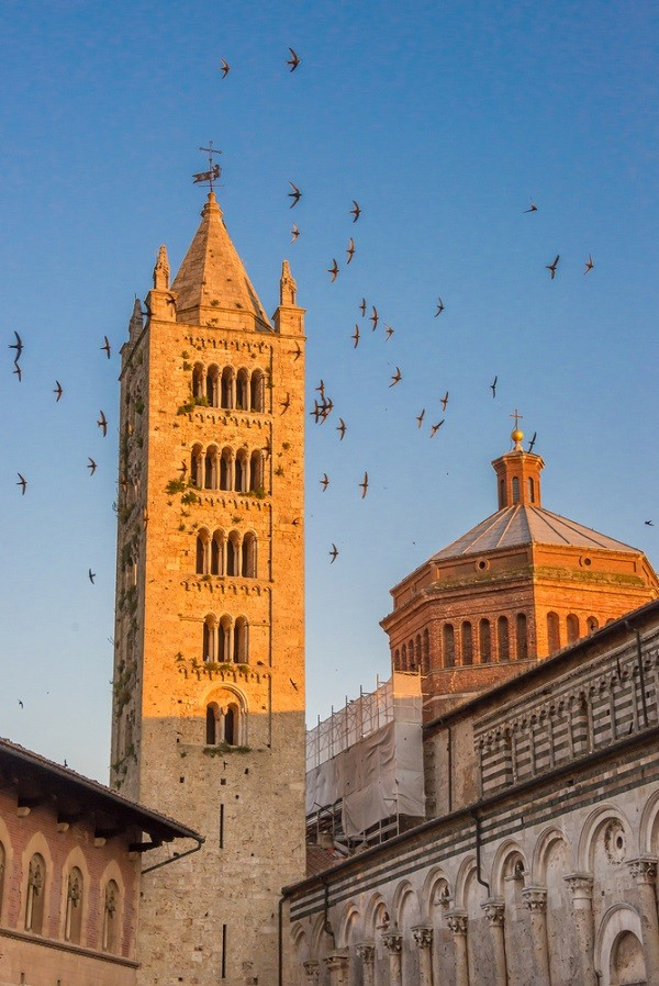 zwaluwen-Italie