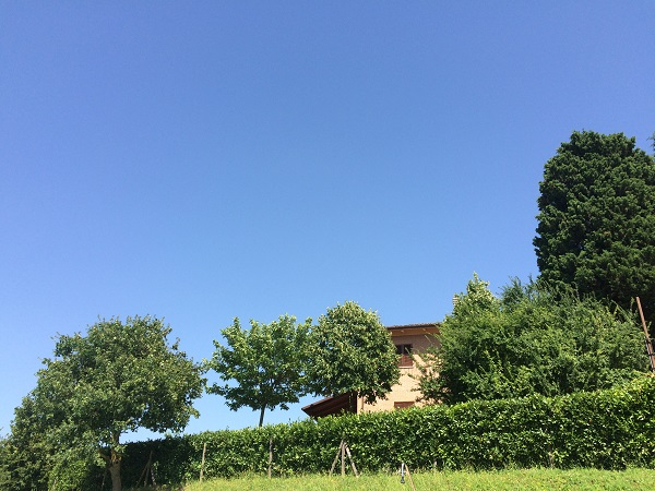 zwembad-Countryhouse-Montesoffio-Le-Marche (3)